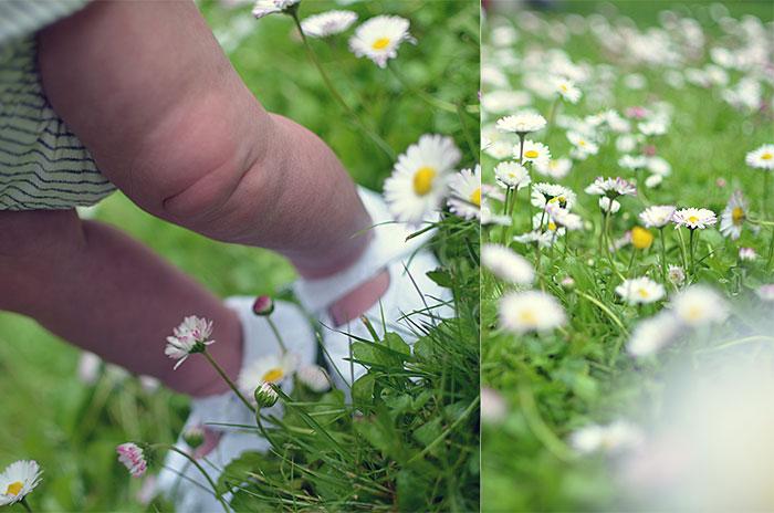Flora på promenad